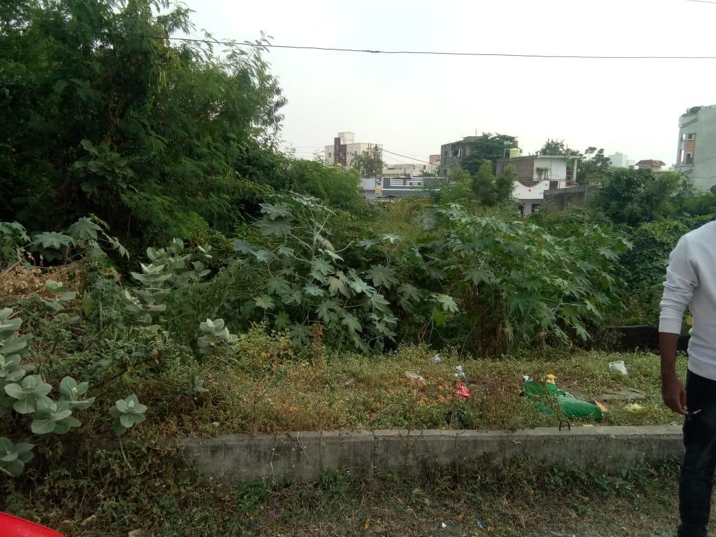 Plot in Dighori